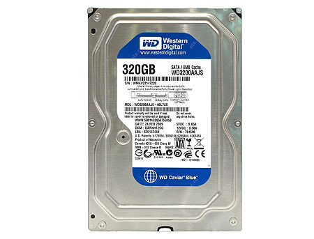 "3.5"" HDD 320GB Western Digital Caviar Blue WD3200AAJS, 7200rpm, SATA2 , 8MB (hard disk intern HDD/внутренний жесткий диск HDD)"