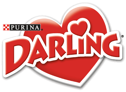 Darling Dog cu vita10 kg