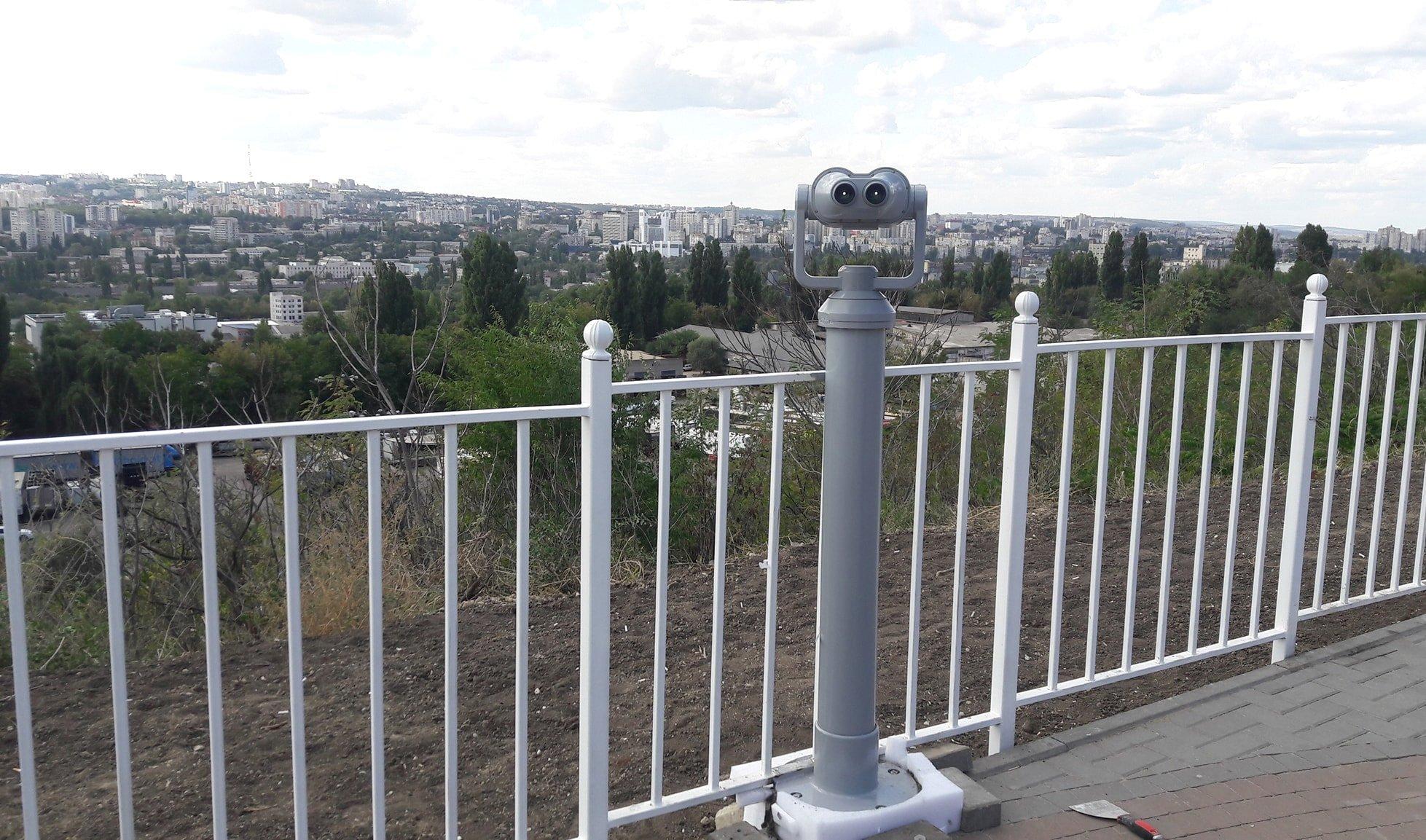 viziunea panoramică este