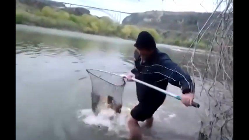ловля рыбы пилы видео