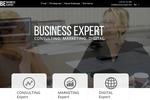 business-expert.md