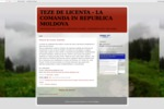 teza-de-licenta.blogspot.com