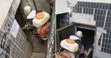 В подвалах столичных домов проводятся дезинсекция и дератизация