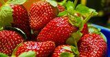 Названа ягода, снижающая риск рака и инсульта