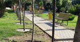 В комратском парке спасают декоративные растения