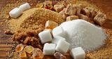 В Молдове над свеклосахарной отраслью нависла угроза исчезновения