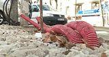 Ремонт улицы 31 августа в Кишиневе не завершен до сих пор