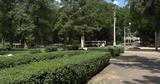 В центральном парке Бельц воруют кустарники