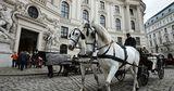 В Риме призывают запретить поездки в конных экипажах