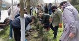 Школьники АТО Гагаузия помогают восстановить экологическое равновесие