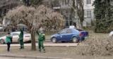 В Кишиневе начались санитарные работы