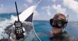 Дайвер три часа дрейфовал в кишащем акулами океане и спасся