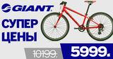 Giant: Велосипеды для всей семьи по суперценам ®