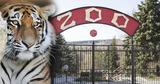 Умер сотрудник зоопарка, на которого в конце января напал тигр