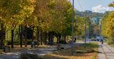 Iute Credit и Verde.md проведут озеленение парка на Скулянке ®
