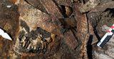Археологи нашли на Дону погребение скифской амазонки