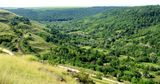 Молдова соблюдает стандарты устойчивого лесопользования в Европе