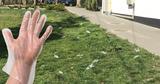 В Кишиневе люди, выходя из супермаркетов, бросают перчатки на землю