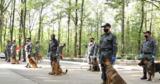 Собаки-пограничники соревновались на звание лучшего впоискесигарет