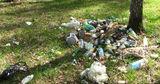 Агентство по охране окружающей среды: Не оставляйте мусор в лесу