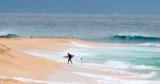 Гавайи станут первым штатом США, где введут ЧС по климату