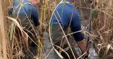 Украинцы под носом у пограничников построили спиртопровод в Молдову