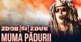 Группа Zdob și Zdub порадовала поклонников новым видео