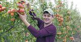 Microinvest: Благодаря нашей поддержке садоводы могут расширять бизнес Ⓟ