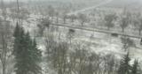 Во многих регионах страны на исходе марта выпал снег