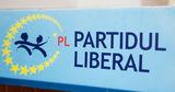Либеральная партия сделает все возможное для смены власти