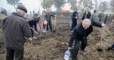 Национальный день озеленения края пройдёт в субботу, 26 октября