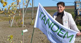 Tandem: Купи мебель - посади дерево ®