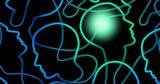 Эксперименты показали, как обучение меняет мозг