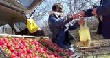 Некоторые торговцы выдают импортную клубнику за молдавскую