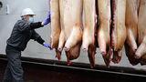 ЕC призвал Россию снять запрет на поставки свинины после решения ВТО