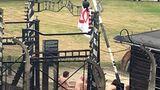 В Польше голые мужчины зарезали овцу и сковали себя цепями у музея Аушвиц