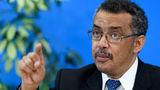 Главой ВОЗ стал представитель Эфиопии