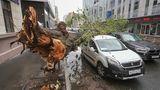 Из-за урагана в Москве пострадало более 100 человек