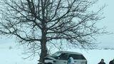 Accident de lux la Telenești: Un Range Rover a intrat în copac
