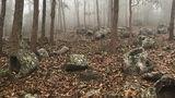 Найдены древние монументы неизвестного происхождения