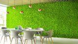 Стабилизированный мох – присутствие природы в вашем доме ®