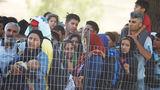 Польша, Венгрия и Австрия не принимают беженцев