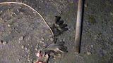 В Дубоссарском районе рабочий умер от удара током