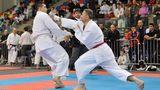В Республике Молдова прошел 26-й чемпионат мира по шотокан каратэ