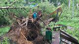 В Москве от урагана погибли 14 человек