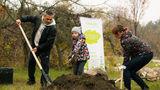 Жители столицы вместе с Verde.md подарили Кишиневу 42 новых дерева