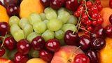 Молодежь Беларуси приедет в Молдову на уборку черешни и винограда