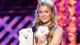 Пэрис Хилтон заплатит в $10 тыс. за поимку женщины, укравшей её собаку
