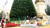 Самую высокую рождественскую елку в Оргееве зажгут 8 декабря