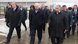 Лукашенко обнаружил «Освенцим» и «кладбище» на коровьей ферме